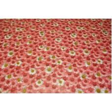Margherite rosa